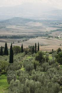 Tuscany Landscape by Alessia Cerqua