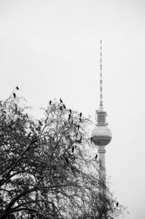 berlin, alexanderplatz by amonkeywithcamera