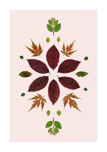 Leaves-of-june-4