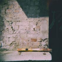 16020512-agfaoptima100-08-2007-klimtposter