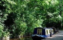 Llangollen Canal von Harvey Hudson