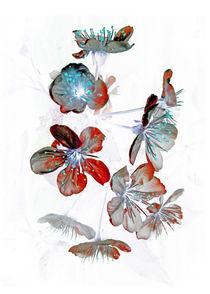 Cherry Blossom light von modartisto