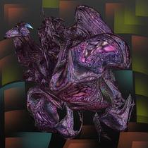 Kapritaka by Helmut Licht