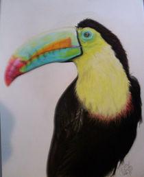Toucan Color Draw von Santiago Rios