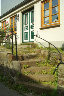 Flensburgsteintrepperosenhausjun2016