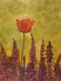 Mohnblume und Lupinen von Rena Rady