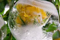 Yellow rose II in ice 1 by Marc Heiligenstein