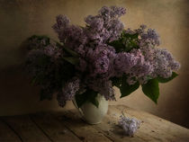 Fresh lilac in white pot von Jarek Blaminsky