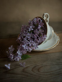 Lilacs and teacups by Jarek Blaminsky