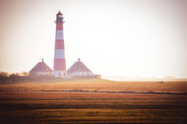 20140309-st-peter-ording-0379