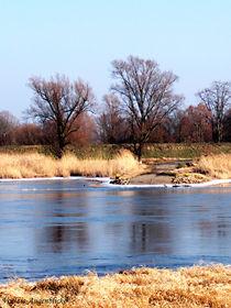 'Klarer Wintertag an der Oder' by voelzis-augenblicke