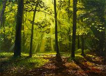 Wald von Christian Heese