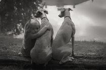 'Innige Freundschaft - Frendship for ever' von Chris Berger