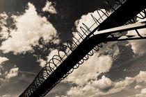 Slinky Springs To Fame (7-141022) B+W von Franz Walter Photoart
