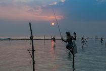 Stelzenfischer am Koggala-Riff   Sri Lanka von Thomas Keller