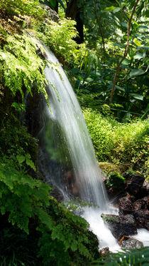 Kleiner Wasserfall von Stephan Gehrlein