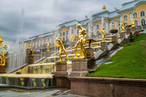 Fountains in Peterhof by ronny