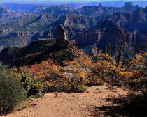 Grand-canyon-national-park-north-rim-scenic-3