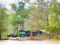 Lake-cheaha-picnic-area