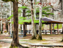 Pavilion-at-cheaha-state-park