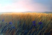 Meadow300