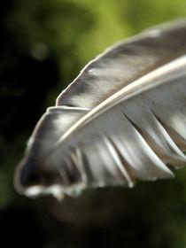 Friedliche Feder/Peaceful Feather von acrylice