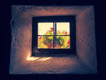 Vintage-window-dsc-3547-1