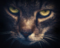 Pixelcat by Ingo Menhard