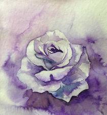Ton in Ton Zeichnung Rose