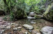Martinet-creek-aiguafreda-catalonia