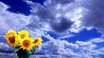 Sonneundwolken