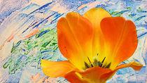 Tulipan-in-der-malwerkstatt