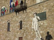 Michelangelos David vor dem Palazzo Vecchio, Florenz by Steffanie Reimann