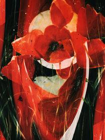 Roter Mohn - Abstrakt by Chris Berger