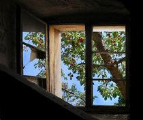 Sommergartenfenster by Nikola Hahn
