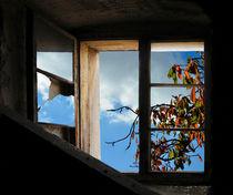 Herbstgartenfenster by Nikola Hahn