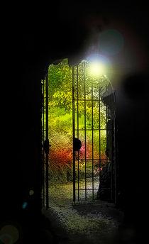Tor zum Garten by Nikola Hahn