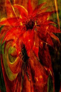 Phoenixer