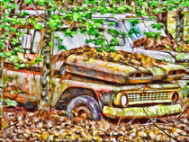 Abandoned-cars-overrun-by-nature