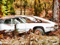 Cars left for dead von lanjee chee