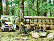 Just rusting away in the woods by lanjee chee