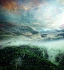 Carpathian Fog  by florin