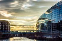 Unser Europa-Parlament, 3 by Hartmut Binder