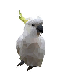 Low-poly-cockatoo