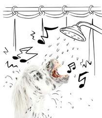 """Pony-Power """"Shower"""" von cavallo-magazin"""