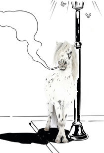 "Pony-Power ""Stranger"" von cavallo-magazin"