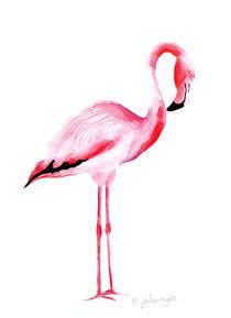 Flamingo 5 von Julia Reyelt