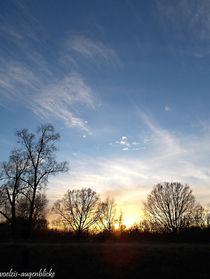 Winterhimmel-kusst-abendsonne