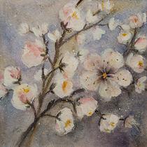 'Early Flower - Frühe Blüten' von Chris Berger