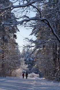 Winter walk by unrealkm